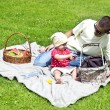 Baby With Father On Picnic - Foto Stock