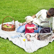 Baby With Father On Picnic - Stock fotografie