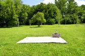 Piknik — Foto Stock