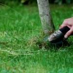 芝生芝刈り機 — ストック写真