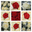 Red and white rose collage - Foto de Stock  