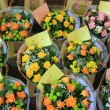 Flowers on french market — Stockfoto