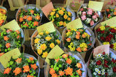 Flowers on french market — Stock Photo