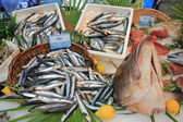 Fresh fish on a fish market — Stockfoto