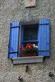 Windows dans la provence — Photo