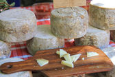 Cheese on a French market — Stock fotografie