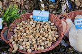 Kabuklu balık pazarında — Stok fotoğraf