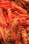 Small red lobsters — Stock Photo