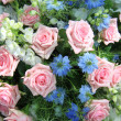 Stock Photo: Blue and pink flower arrangement