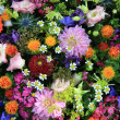 Mixed bouquet in bright colors — Photo