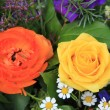 Yellow and orange rose — Stock Photo