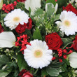 Red and white flower arrangement — 图库照片