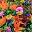 Mixed bouquet in bright colors — Stock Photo