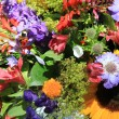 Mixed bouquet in bright colors — Stock fotografie