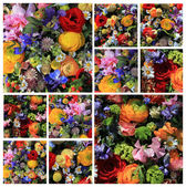 Mixed field bouquet collage — Stock Photo