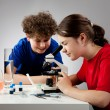 Kids examining preparation under the microscope — Foto Stock