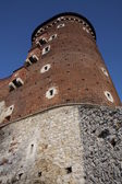 Fortified tower — Stock Photo