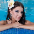 The beautiful girl in pool — Stock Photo #10749274