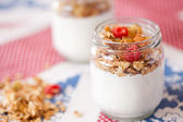 Delicious and healthy yogurt with granola — ストック写真