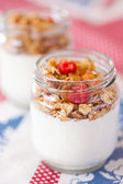 Delicious and healthy yogurt with granola — Photo