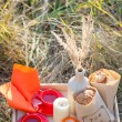 Picnic - tea and cookies — Stok fotoğraf