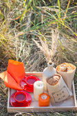 Picnic - tea and cookies — Stock Photo
