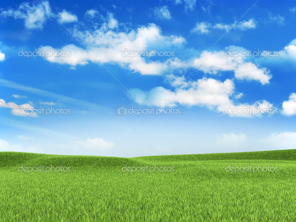 Nature background - meadow — 图库照片 #11466773