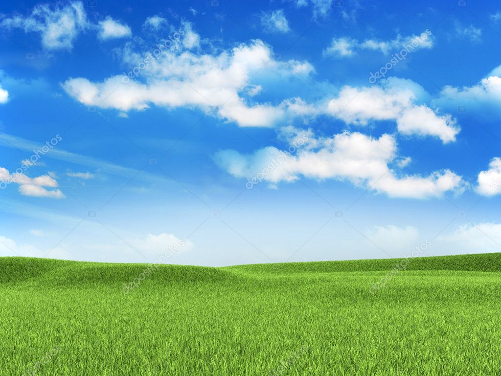 Nature background - meadow — Stock Photo #11466773