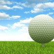 Golf ball — Stock Photo #11896160