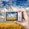 Digital camera in hand. Landscape — Stock Photo