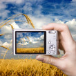 Digital camera in hand. Landscape — Stock Photo #12341468