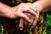 Hands of an elderly woman — Stock Photo