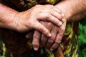Hands of an elderly woman — Stock Photo