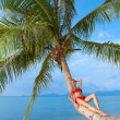 Woman suntanning on the trunk of a palm - Stock Photo