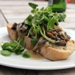 Royalty-Free Stock Photo: Creamy Cheese Mushroom Bruschetta with Watercress