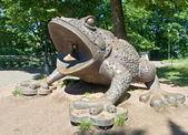 Giant toad — Stock Photo
