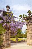 Jardines de palacio de mirabell — Foto de Stock