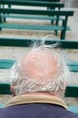 Back of head of senior with grey hair — Stock Photo