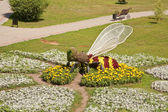 Wasp on a flowerbed — Stock Photo