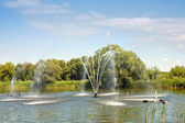 Fountain on the river Tsna — Stock fotografie