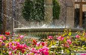 Old fountain — Stock Photo