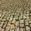 Paving Stone. - Stock Photo