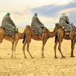 Camel caravan in desert, Sahara, Tunisia — Stock Photo #11250933