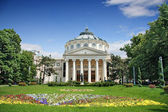 Romanian Athenaeum, Bucharest, Romania — Stock fotografie