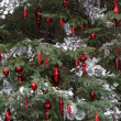 Christmas tree decorations — Foto de stock #10760182