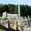 Grand Cascade Fountains of Peterhof Palace — Stock Photo #10978103