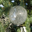 Christmas decorations — Fotografia Stock  #11699122