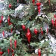 Christmas decorations — Foto de stock #11971914