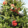 Stockfoto: Christmas decorations