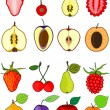 Set of fruits — Stock Vector #11261702